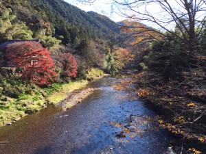 _秋の名栗川