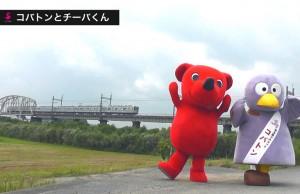kobatonchiba_yokonaga-768x498